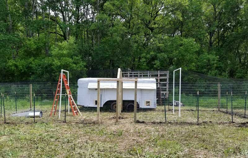 Assembled chicken coop and fencing